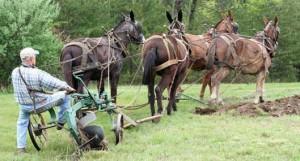 dirt plow
